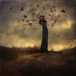 Beautiful-Chaos-by-trini61