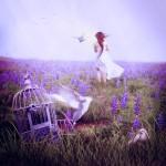 fly_by_lilyenn-d6d4cy6_by_jlilyenn600_600