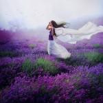 lavender_by_lilyenn-d5rhttf_by_jlilyenn600_600