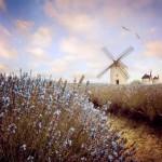 windmills_by_lilyenn-d5kzjqr_by_jlilyenn600_600