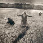 15 l'ambientalista piromane, 2003
