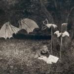 19 il bambino e il suo bosco 1, 2005
