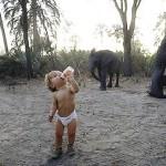 Маленькая Типпи и слоны